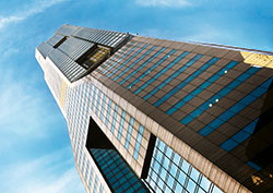 Organisational  Capital